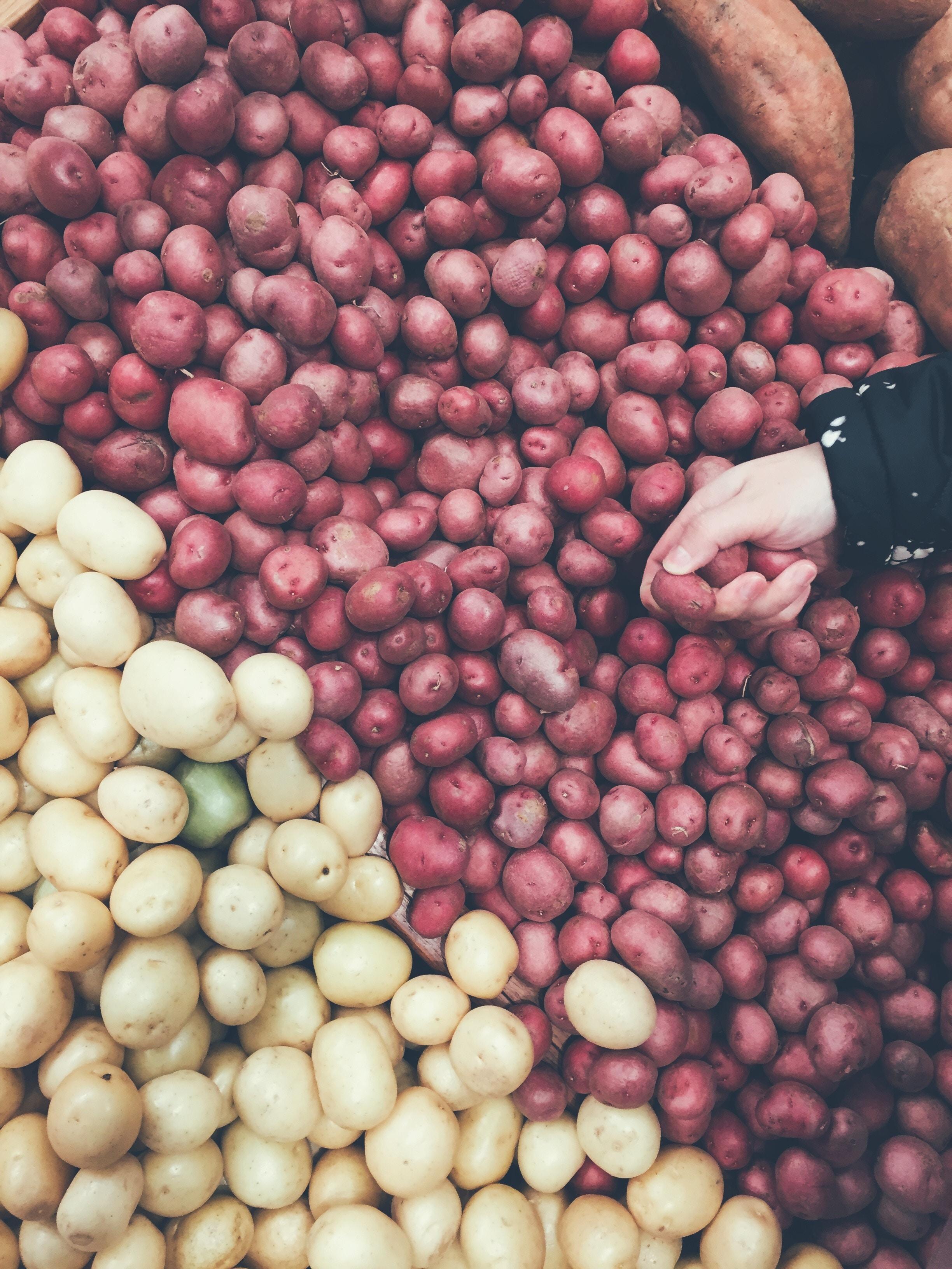Conservation de pommes de terre mes courses en vrac - Comment conserver des pommes de terre coupees ...