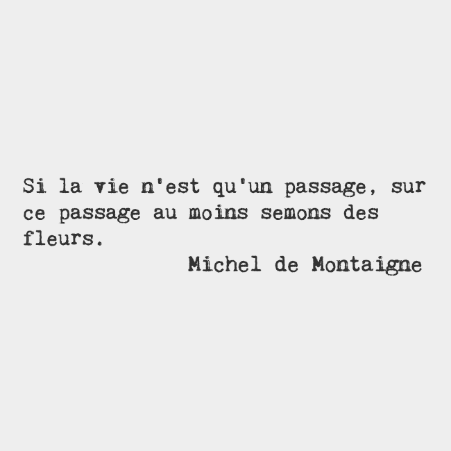 citation michel de montaigne