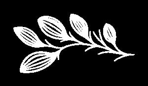 Boutique zéro-déchet : le logo blanc picto