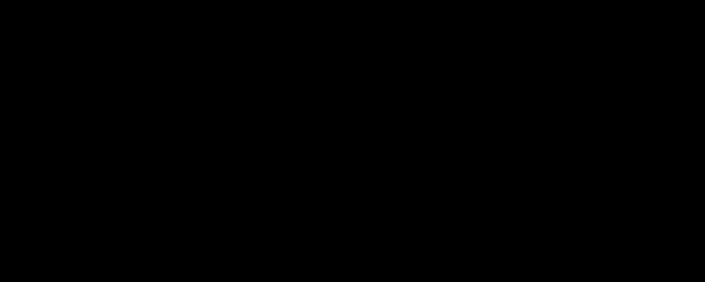 Boutique zéro-déchet : le logo horizontal