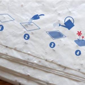 Papier plantable - fonctionnement - Mes courses en vrac